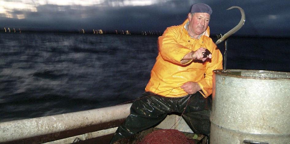 ierse paling visser